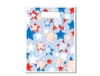 Scatter Bag - Star Tooth Clear 7x10 (100)