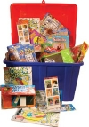 Treasure Chest Mega Toy Mix 500 Count Each